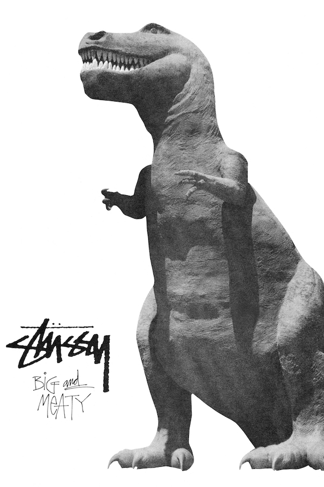 stussy-fall-2017-campaign-03